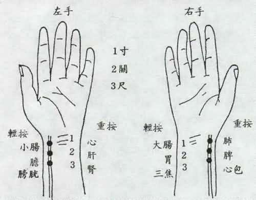 【读经典学中医】《难经》白话解:第一难,中医把脉的原理