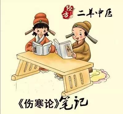 中医二羊原味伤寒论10:学伤寒论原文10天的最大收获及太阳病脉症上篇总结