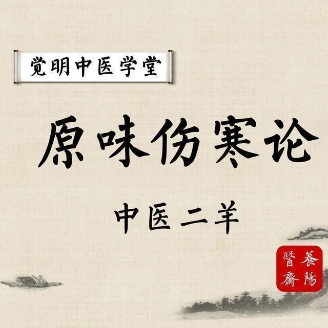 中医二羊:学习伤寒论经方必须掌握的八纲辨证,治病底线可确保病不会治坏