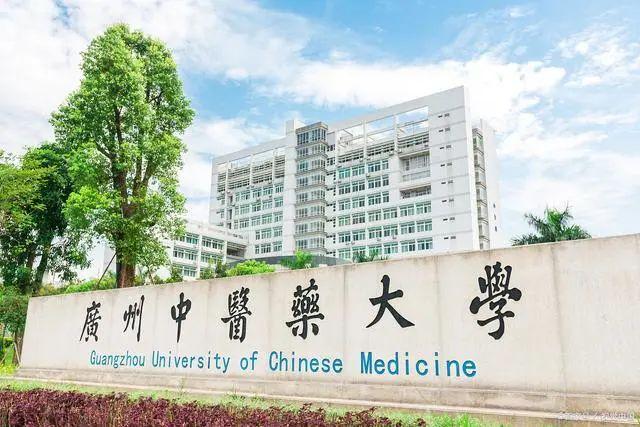 中医二羊:七月的第一天,在夹缝中生存的中医找到一线生机,纯中医不容易